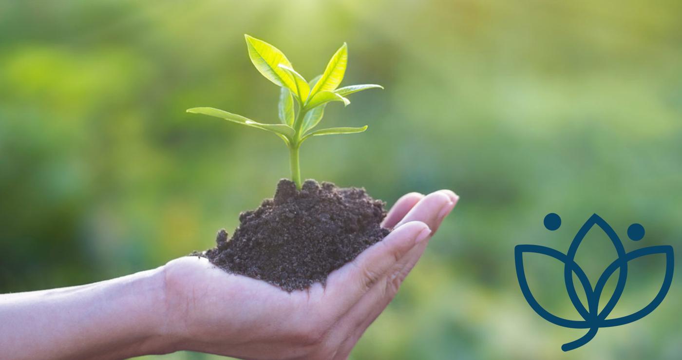Notre démarche dans le développement durable